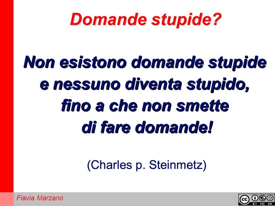 Domande stupide