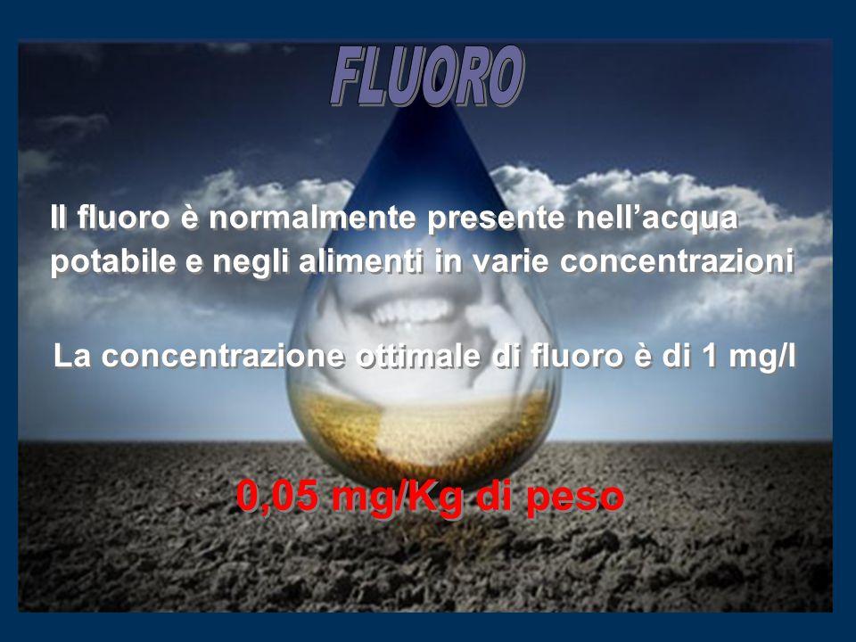 FLUORO Il fluoro è normalmente presente nell'acqua potabile e negli alimenti in varie concentrazioni.