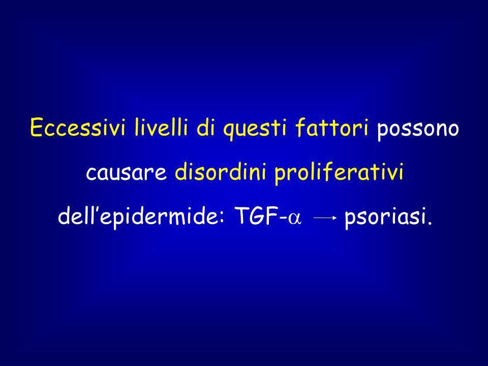 Eccessivi livelli di questi fattori possono causare disordini proliferativi dell'epidermide: TGF-a psoriasi.