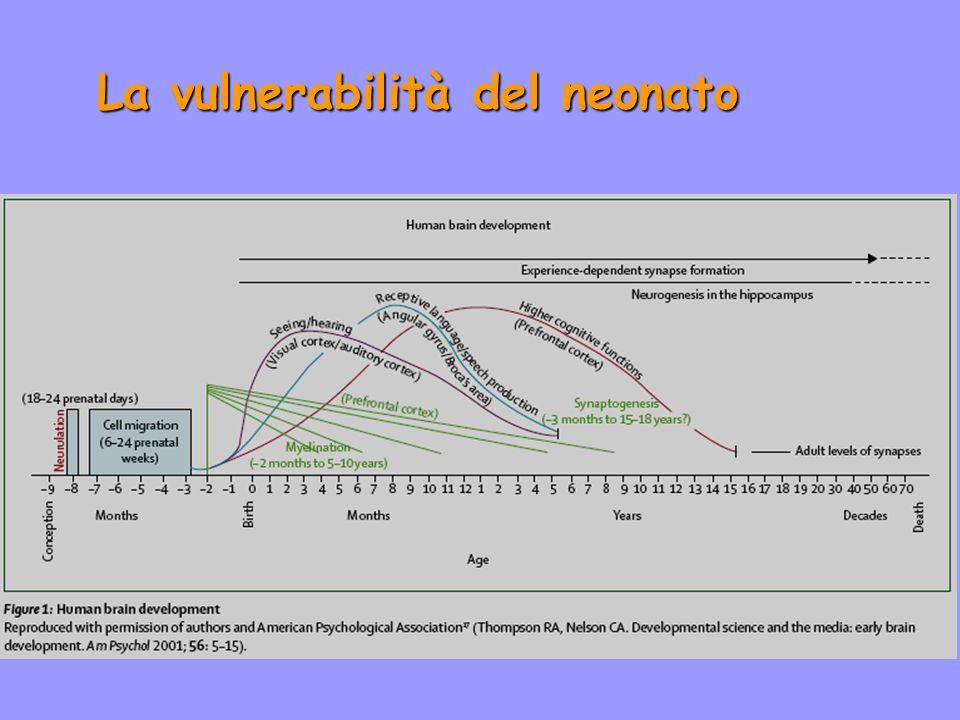 La vulnerabilità del neonato