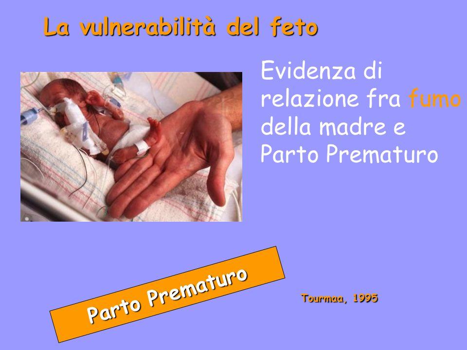 La vulnerabilità del feto