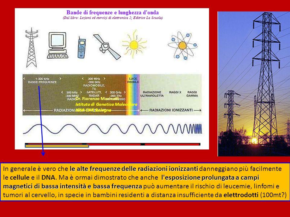 Dr. Fiorenzo Marinelli Istituto di Genetica Molecolare. IGM-CNR Bologna.