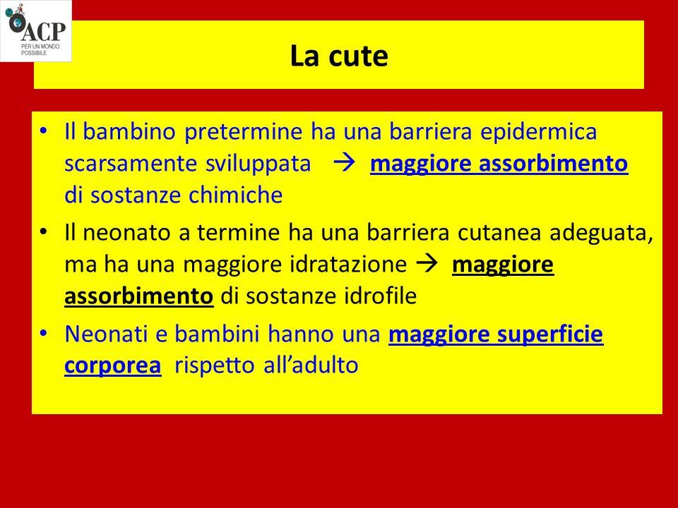 La cute Il bambino pretermine ha una barriera epidermica scarsamente sviluppata  maggiore assorbimento di sostanze chimiche.