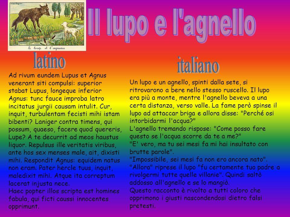 Il lupo e l agnello latino italiano