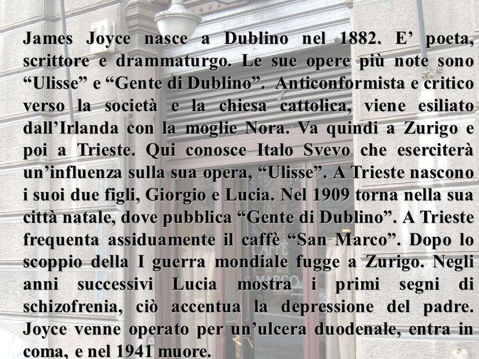 James Joyce nasce a Dublino nel 1882. E' poeta, scrittore e drammaturgo.