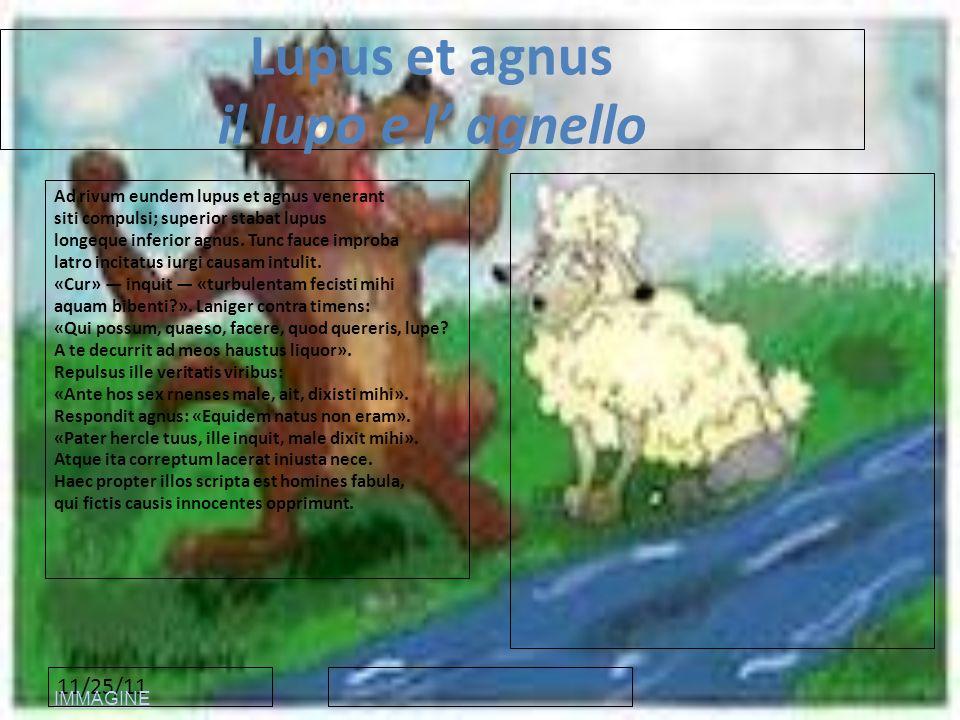 Lupus et agnus il lupo e l' agnello