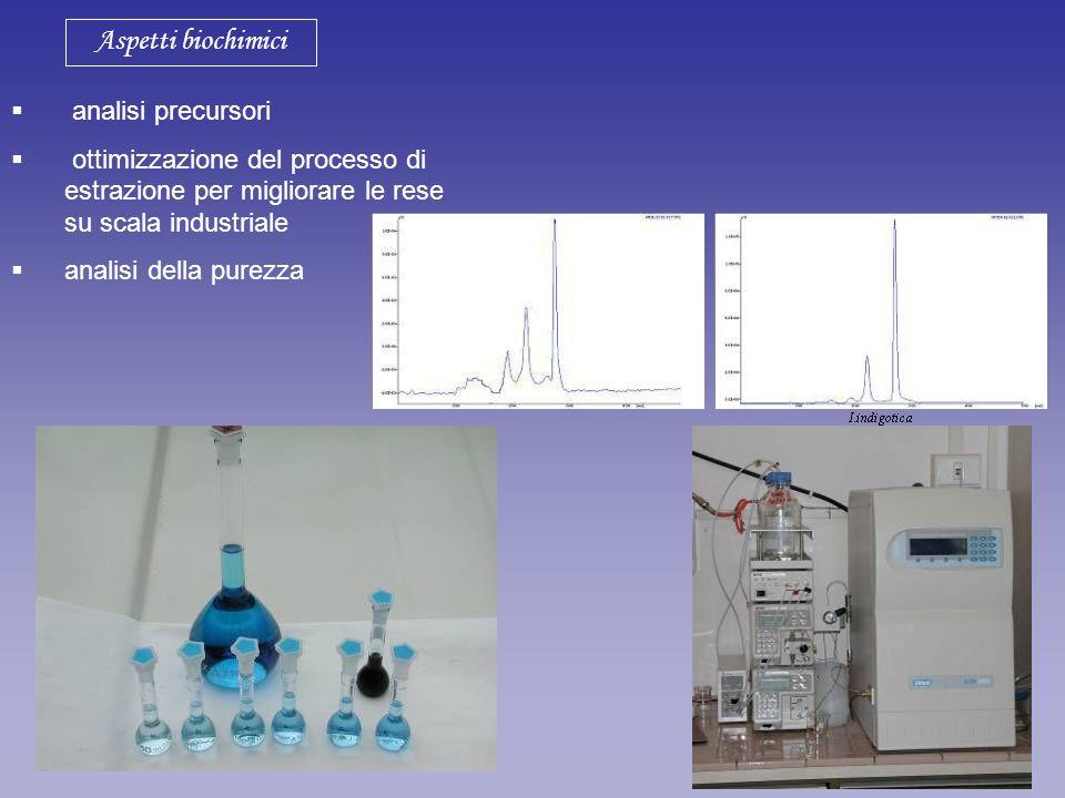 Aspetti biochimici analisi precursori