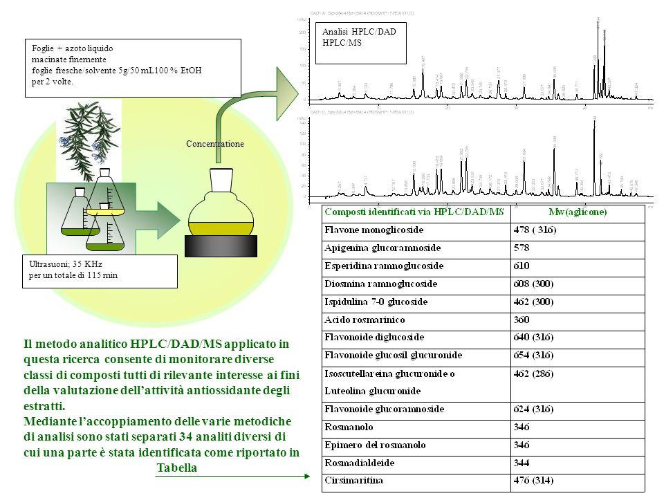 Analisi HPLC/DAD HPLC/MS. Foglie + azoto liquido. macinate finemente. foglie fresche/solvente 5g/50 mL100 % EtOH.