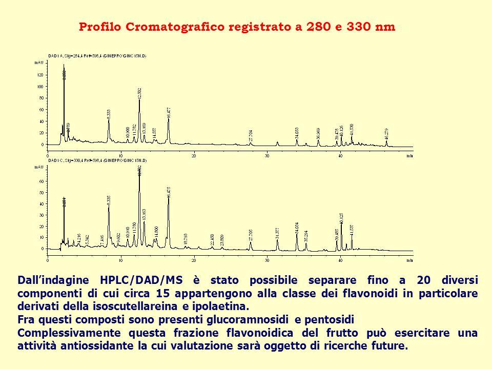 Profilo Cromatografico registrato a 280 e 330 nm