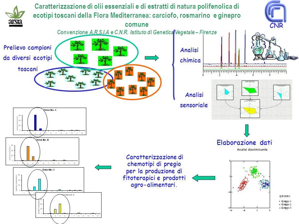 Convenzione A.R.S.I.A e C.N.R. Istituto di Genetica Vegetale – Firenze