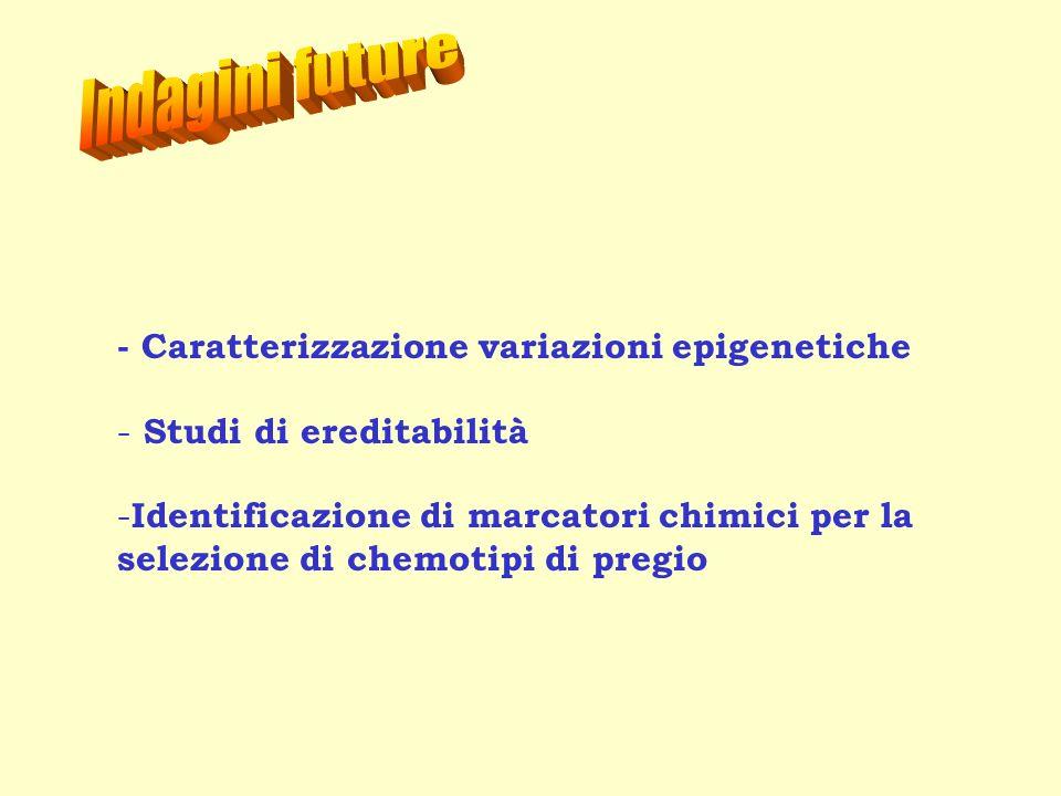 Indagini future - Caratterizzazione variazioni epigenetiche
