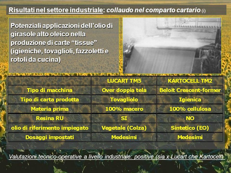 Risultati nel settore industriale: collaudo nel comparto cartario (i)