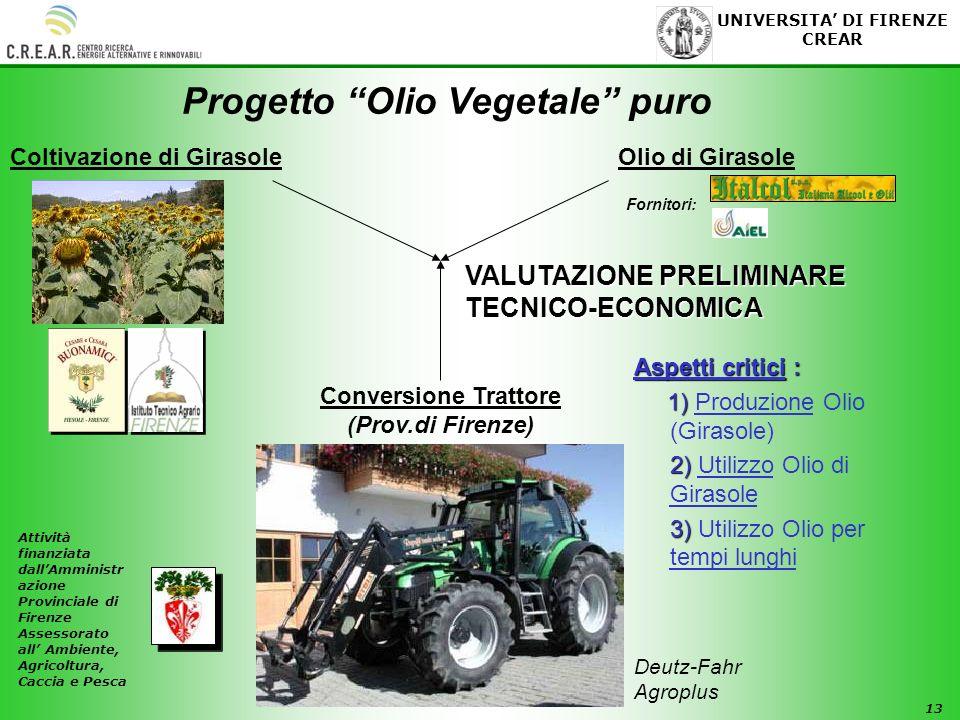 Progetto Olio Vegetale puro Coltivazione di Girasole