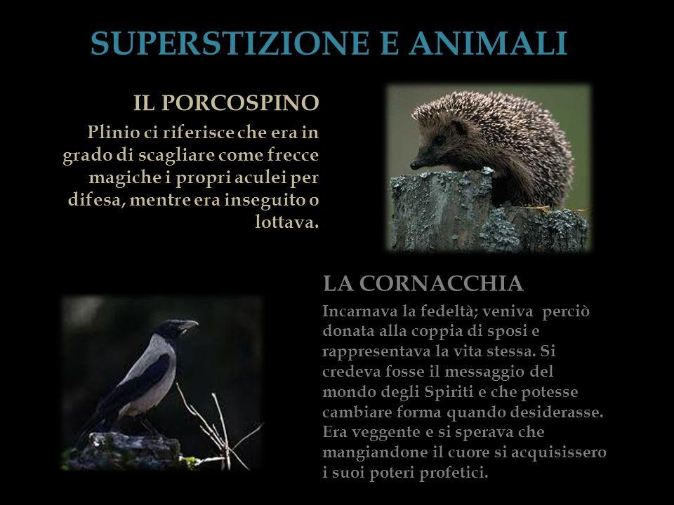 SUPERSTIZIONE E ANIMALI
