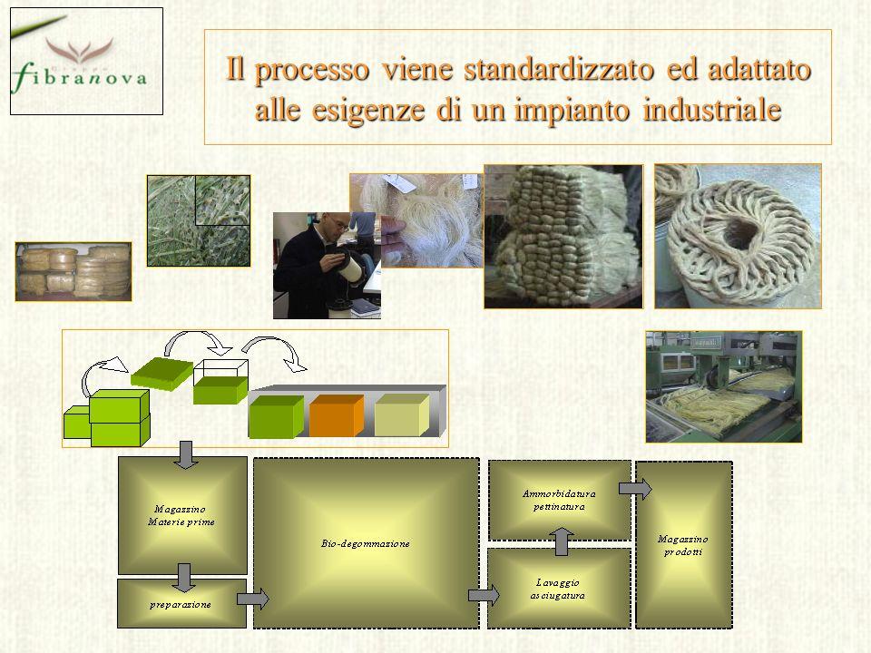 Il processo viene standardizzato ed adattato alle esigenze di un impianto industriale