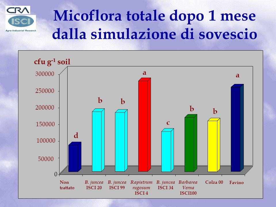 Micoflora totale dopo 1 mese dalla simulazione di sovescio