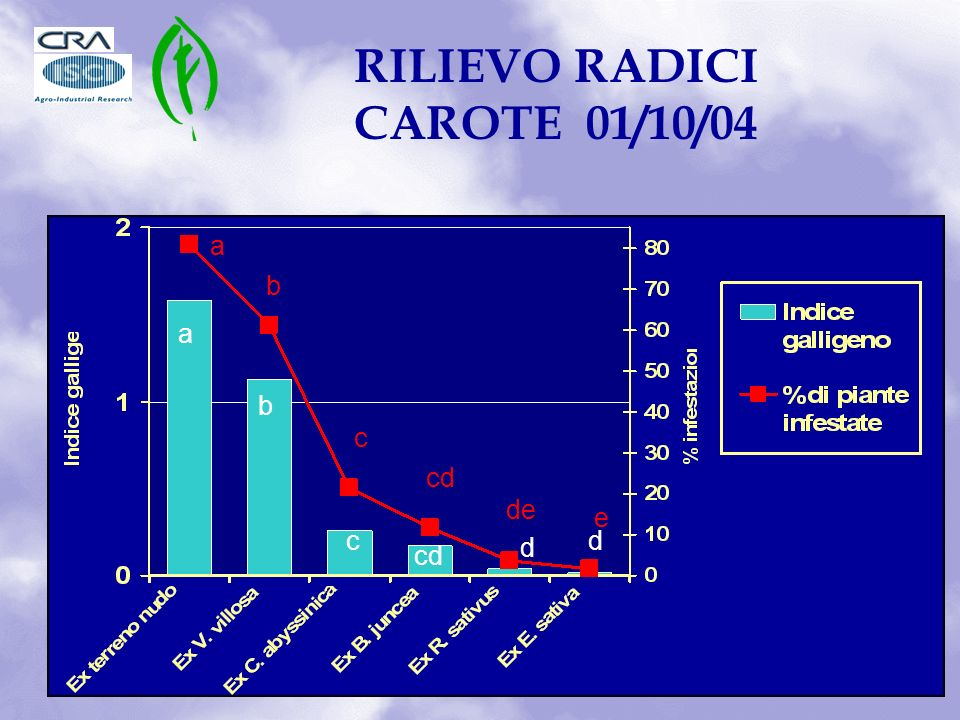 RILIEVO RADICI CAROTE 01/10/04