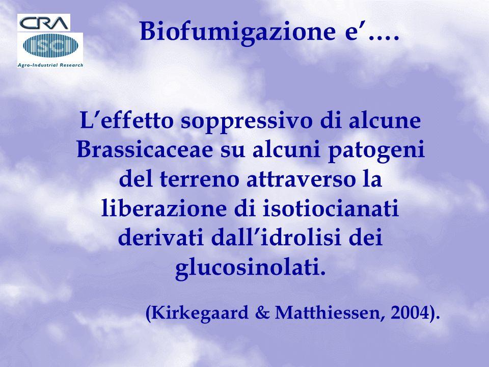 Biofumigazione e'….