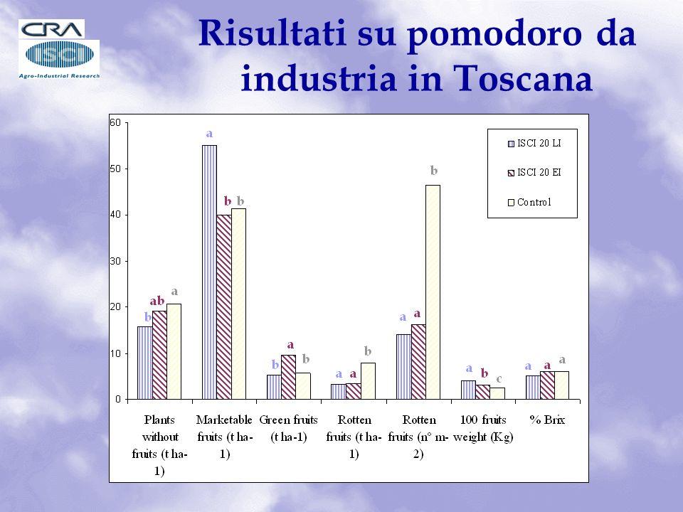 Risultati su pomodoro da industria in Toscana