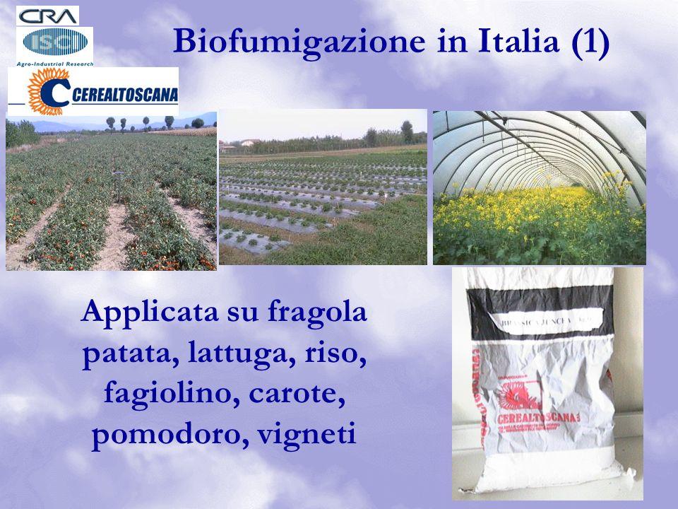 Biofumigazione in Italia (1)