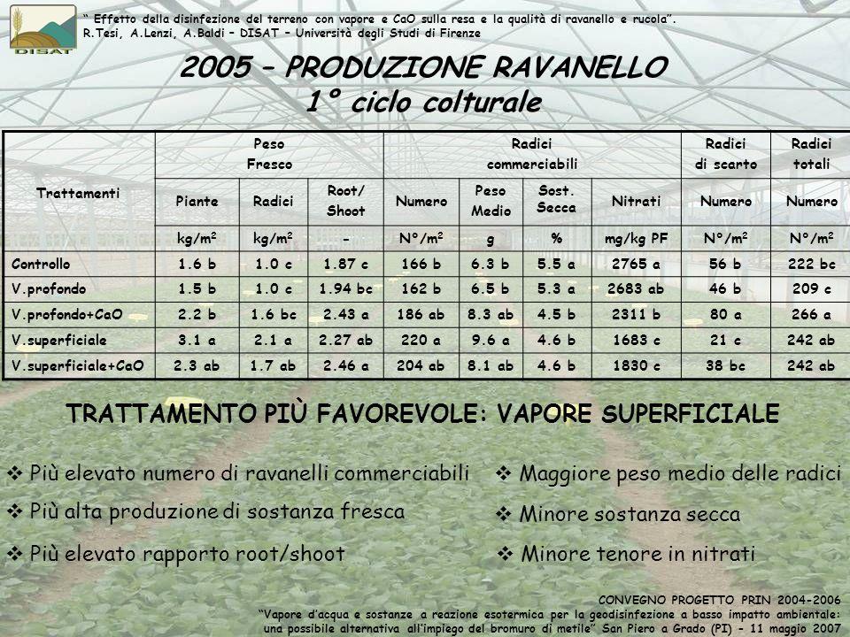 2005 – PRODUZIONE RAVANELLO 1° ciclo colturale