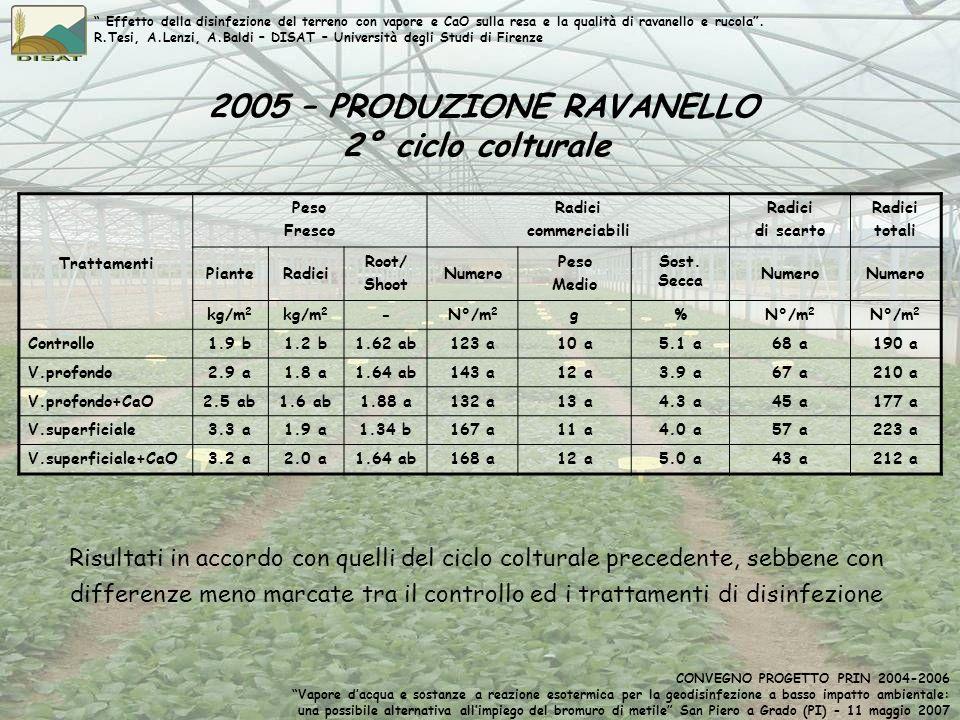 2005 – PRODUZIONE RAVANELLO