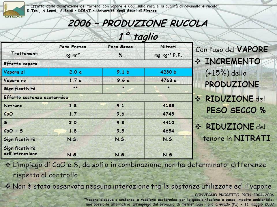 2006 – PRODUZIONE RUCOLA 1° taglio