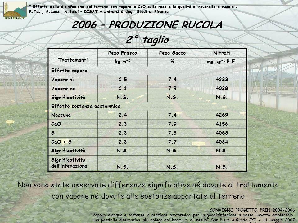 2006 – PRODUZIONE RUCOLA 2° taglio