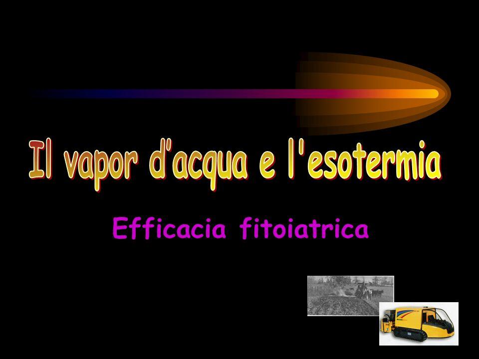 Il vapor d'acqua e l esotermia Efficacia fitoiatrica