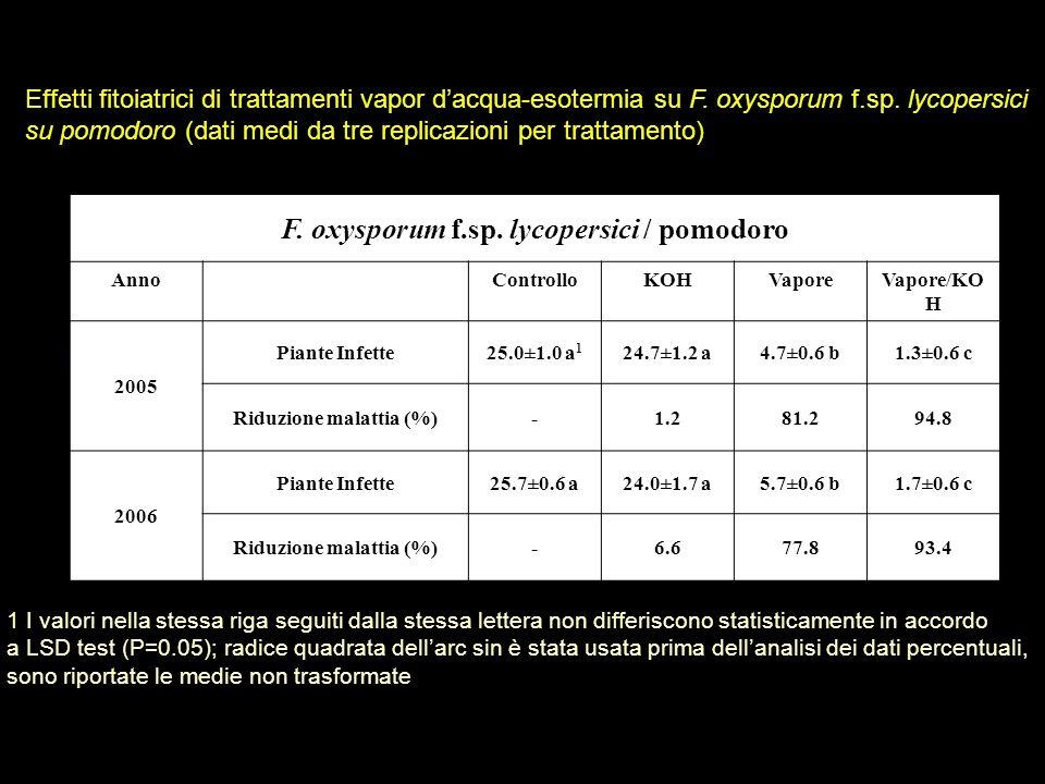 F. oxysporum f.sp. lycopersici / pomodoro Riduzione malattia (%)