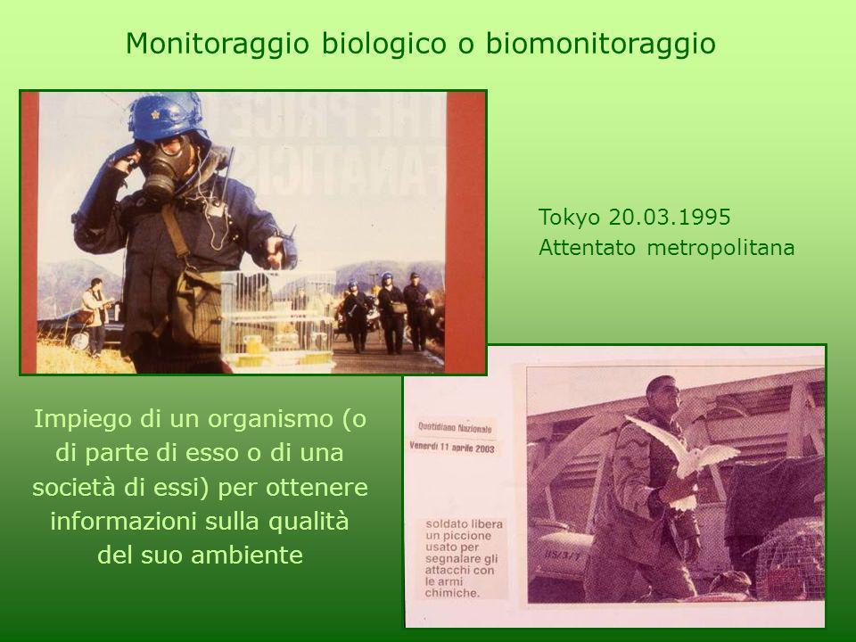 Monitoraggio biologico o biomonitoraggio