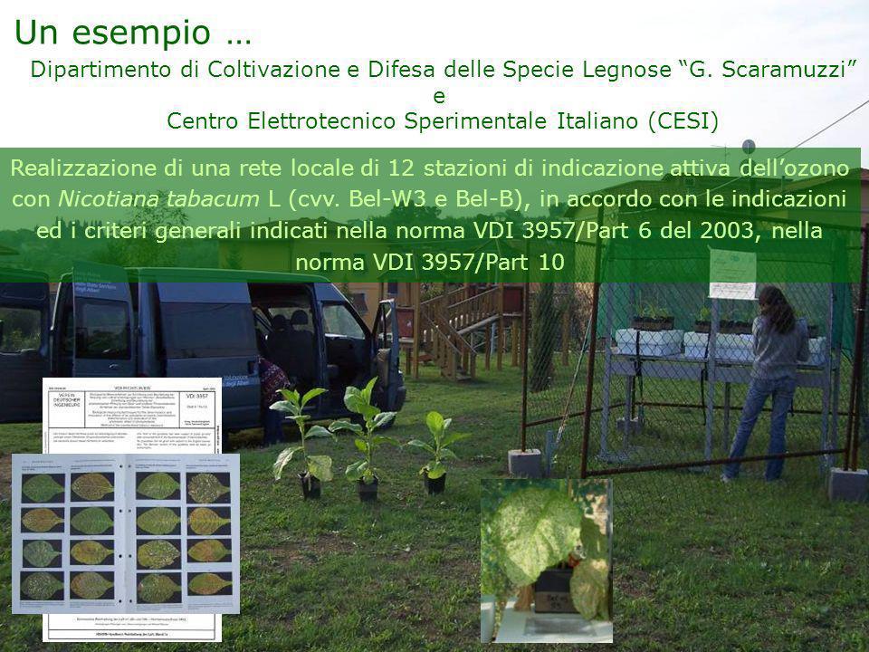 Centro Elettrotecnico Sperimentale Italiano (CESI)