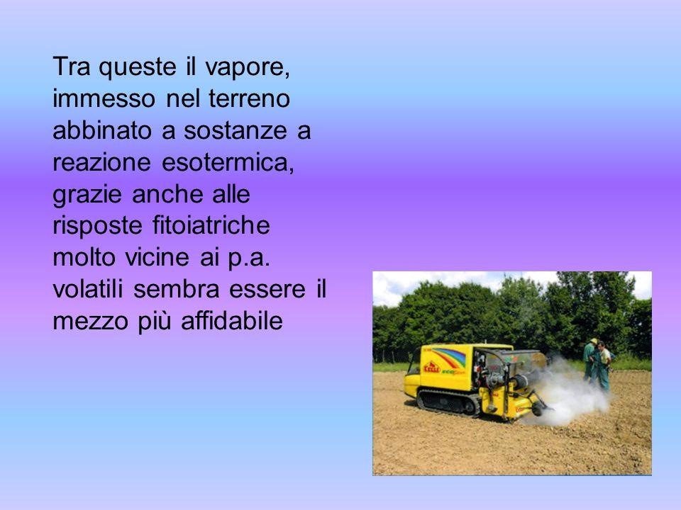 Tra queste il vapore, immesso nel terreno abbinato a sostanze a reazione esotermica, grazie anche alle risposte fitoiatriche molto vicine ai p.a.