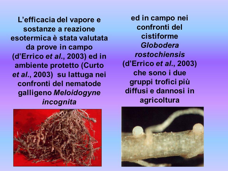 ed in campo nei confronti del cistiforme Globodera rostochiensis (d'Errico et al., 2003) che sono i due gruppi trofici più diffusi e dannosi in agricoltura