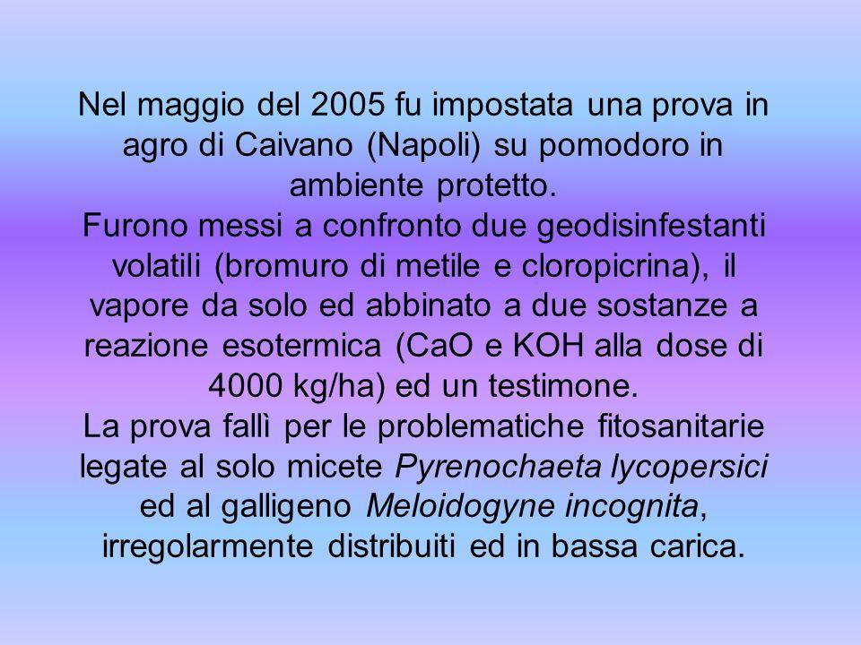 Nel maggio del 2005 fu impostata una prova in agro di Caivano (Napoli) su pomodoro in ambiente protetto.