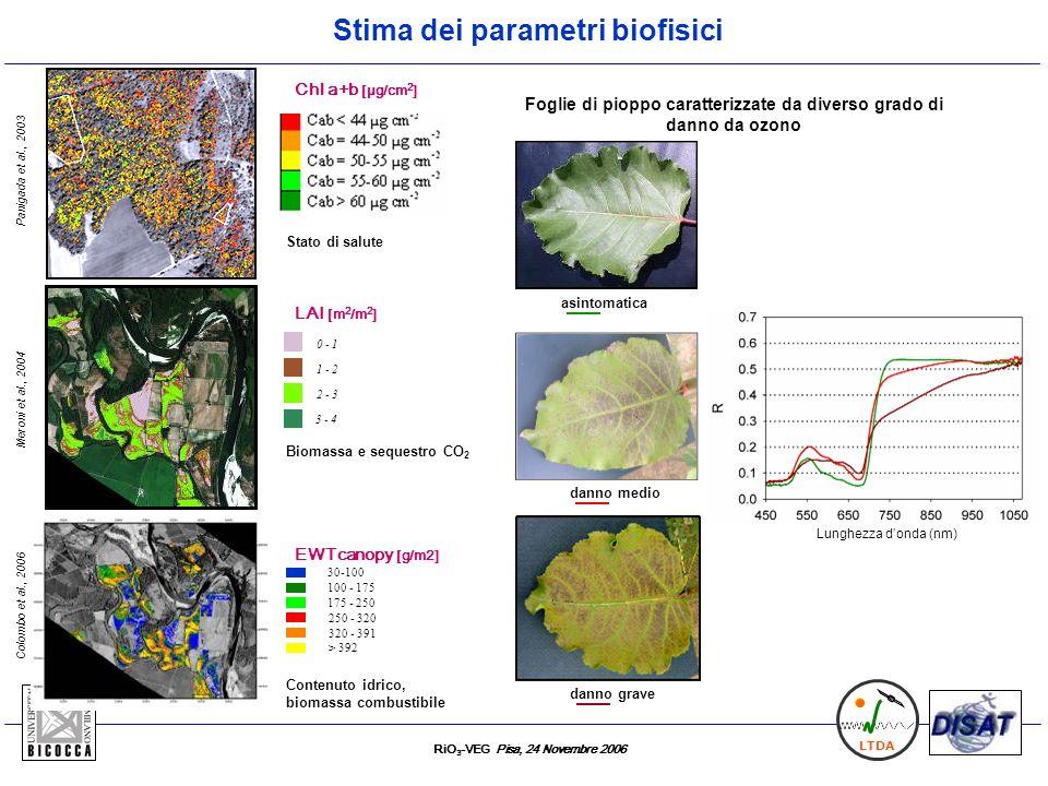 Stima dei parametri biofisici