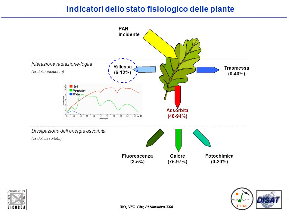 Indicatori dello stato fisiologico delle piante