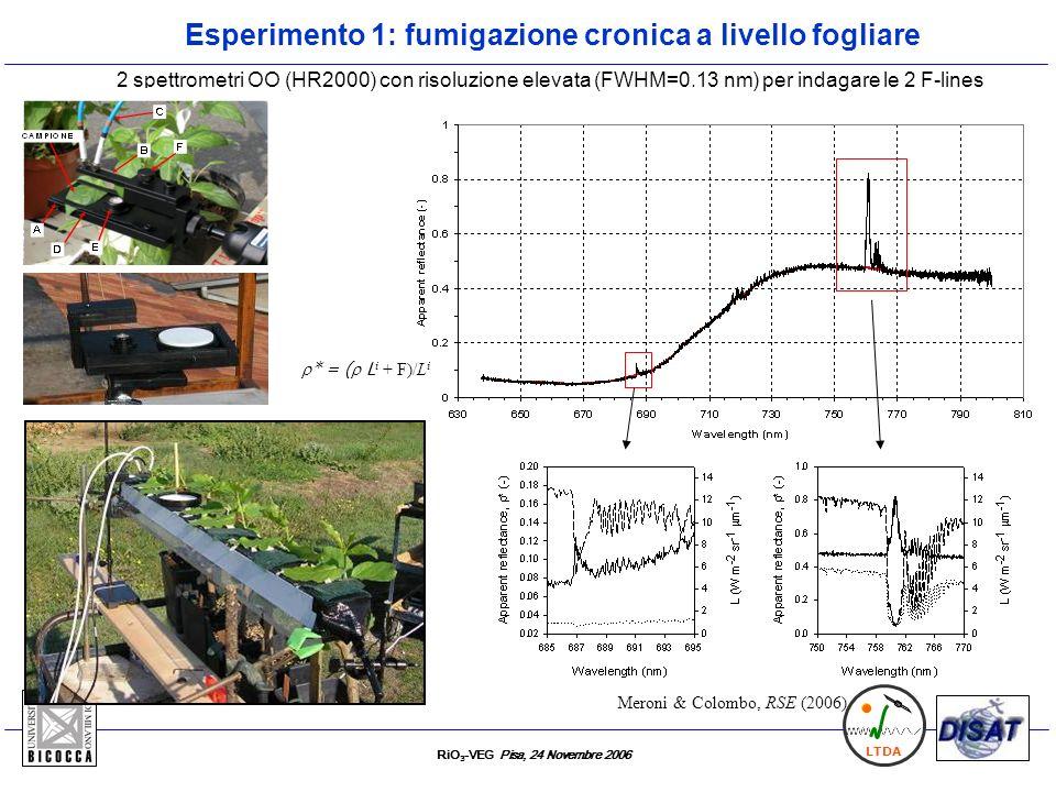 Esperimento 1: fumigazione cronica a livello fogliare