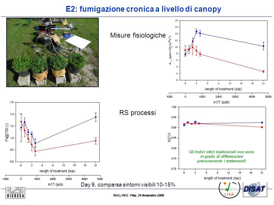 E2: fumigazione cronica a livello di canopy