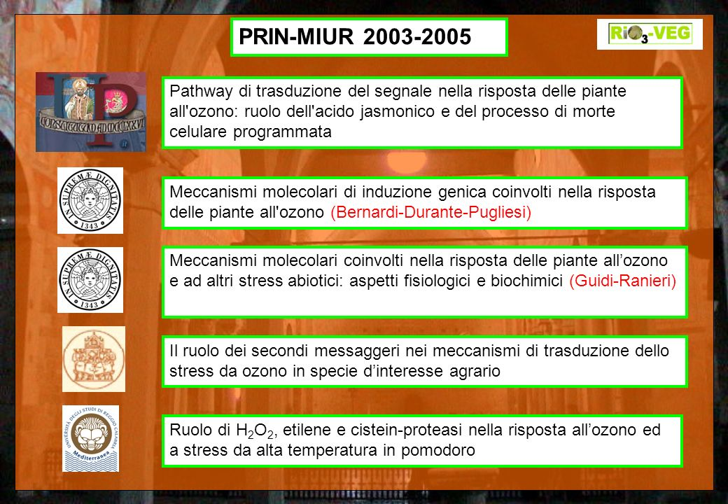 PRIN-MIUR 2003-2005