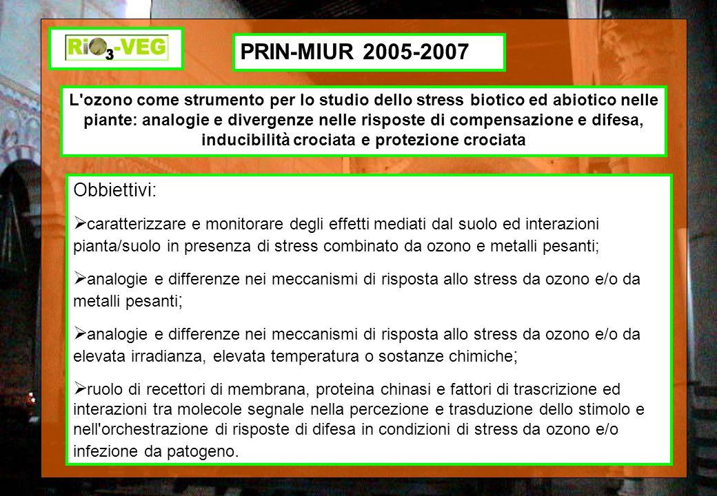 PRIN-MIUR 2005-2007 Obbiettivi: