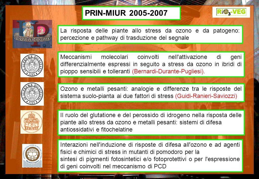 PRIN-MIUR 2005-2007 La risposta delle piante allo stress da ozono e da patogeno: percezione e pathway di trasduzione del segnale.