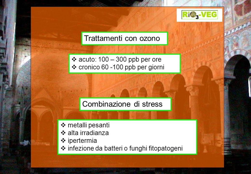 Combinazione di stress