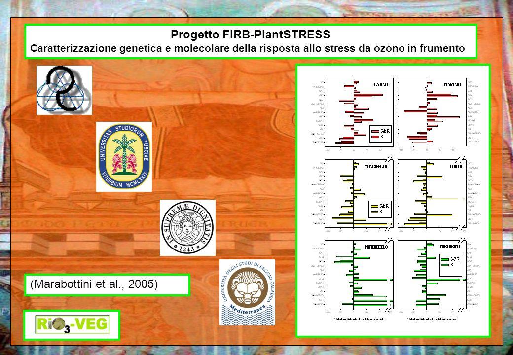 Progetto FIRB-PlantSTRESS