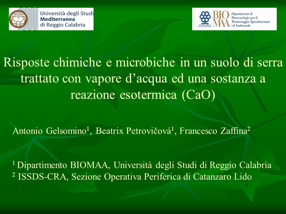 Risposte chimiche e microbiche in un suolo di serra trattato con vapore d'acqua ed una sostanza a reazione esotermica (CaO)