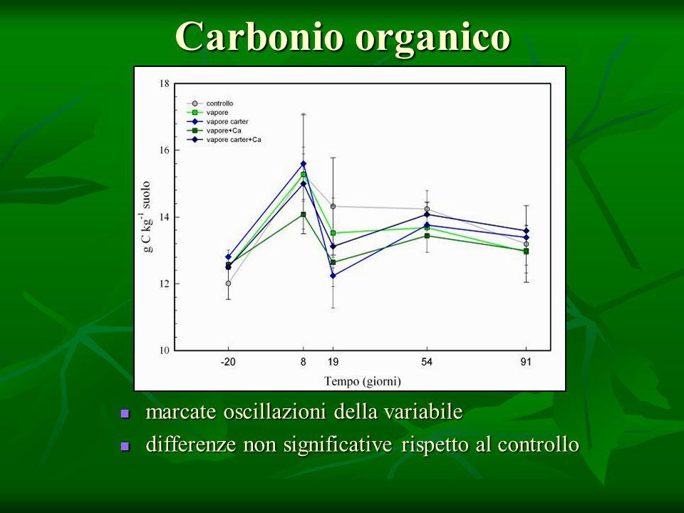 Carbonio organico marcate oscillazioni della variabile