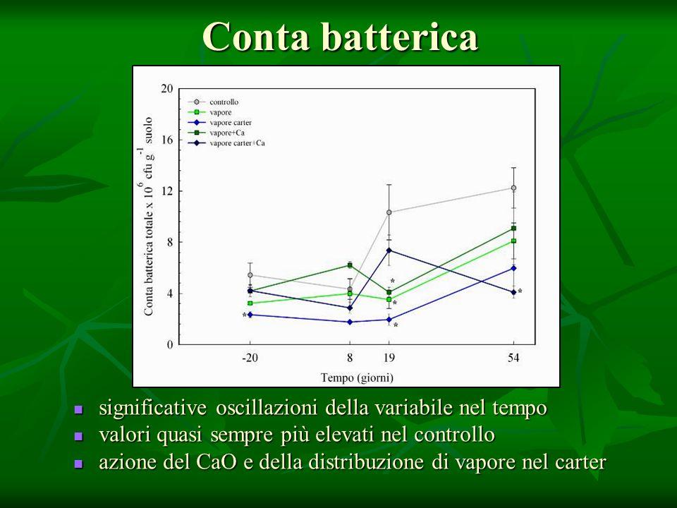 Conta batterica significative oscillazioni della variabile nel tempo