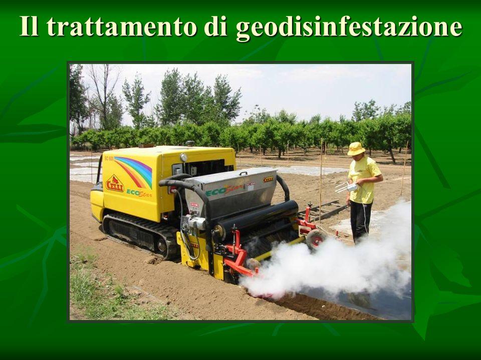 Il trattamento di geodisinfestazione