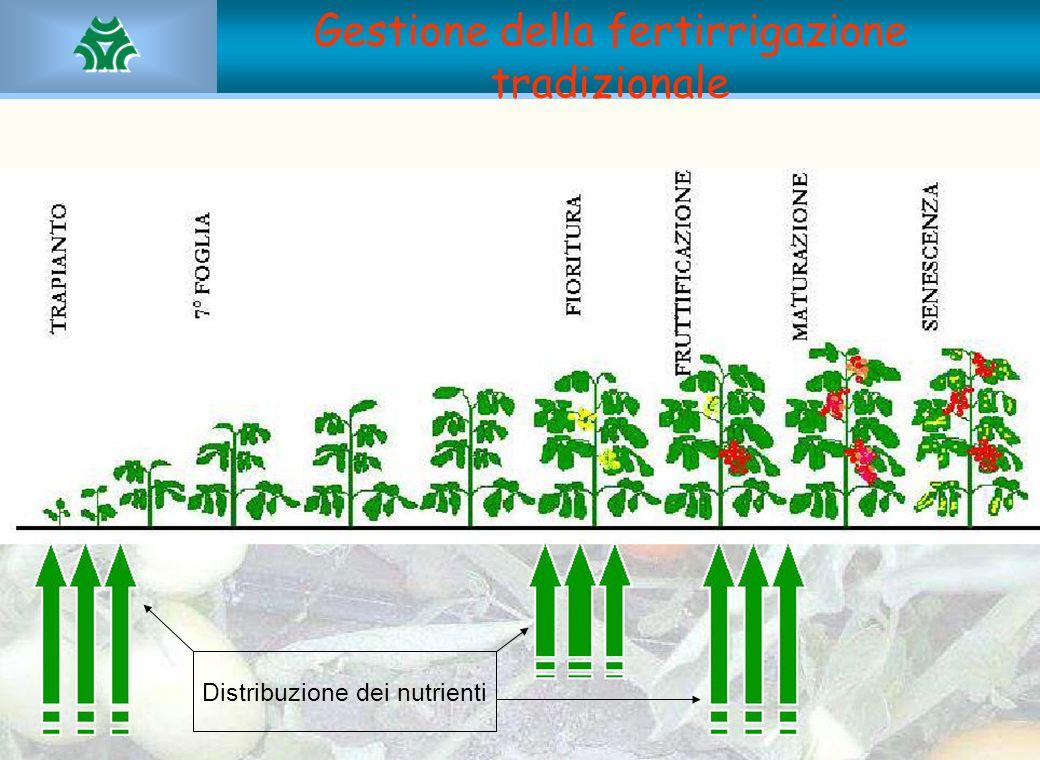 Gestione della fertirrigazione tradizionale