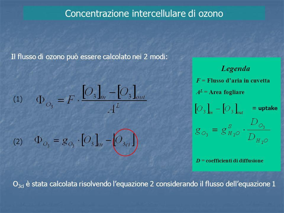 Concentrazione intercellulare di ozono